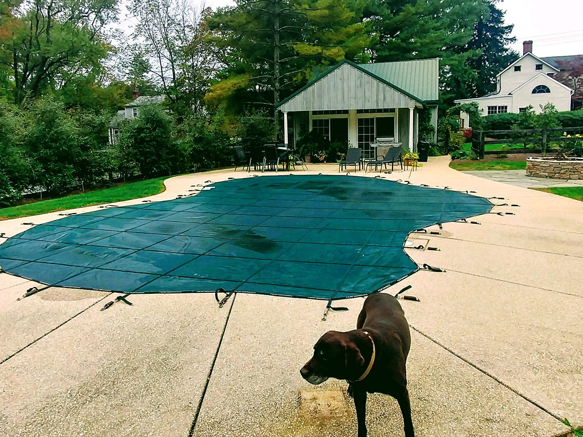 Inground Pool Safety Covers in Belcamp